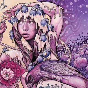 Baroness Try to disappear 12 inch single Picture