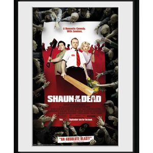 Shaun Of The Dead Key Art Zarámovaný obraz standard