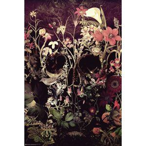 Bloom Skull plakát vícebarevný